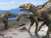 Descubren un nuevo dinosaurio, el primero de su tipo
