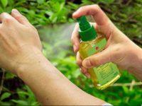 SENEPA: «Cuando una persona compre insecticidas o repelentes debe corroborar que contenga químico clorpirifós»