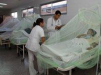 Salud eleva a 34 las muertes por dengue durante la epidemia