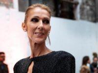 "Celine Dion, Cher y Pitbull se unen a la campaña de la ONU ""Call for Code"""