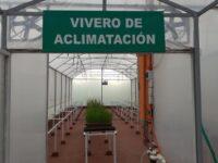 Laboratorio de biotecnología de Petropar producirá plantines de caña de azúcar de alta calidad