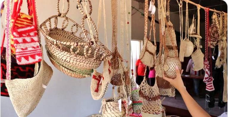 Buscan potenciar el Chaco como opción para atraer turistas